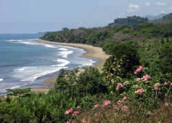 Beautiful, unspoiled beach just south of Dominical, Costa Rica